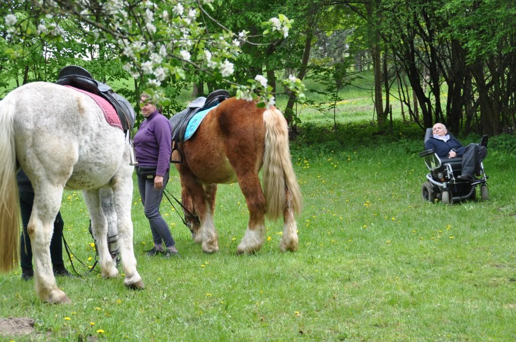 Bernard wie bardzo dużo o koniach, spędza z nimi jak najwięcej czasu, publikuje artykuły