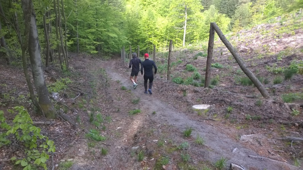 Sopot - wzgórza morenowe i lasy - Wojtek i Andrzej trening zbiegania sobota 8:00