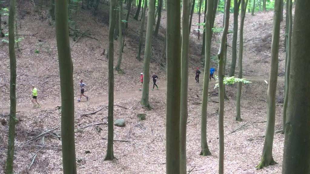 w ostatnią sobotę maja - nasza grupa biegowa dała nam pełne wsparcie - dzięki! Ostatni trening 15km i test plecaków biegowych