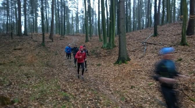 10. szok na 18km – wrotki bdelloidowe / ENG:  shock at 18 km – bdelloid rotifers