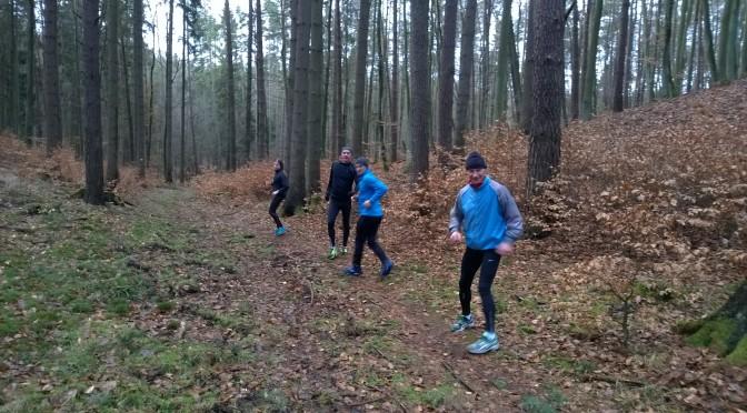 27. słowo od Profesora przed maratonem 42km / ENG: a word from the Professor before Marathon 42km